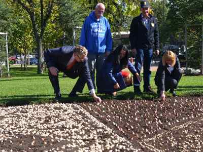 Dutch tulips depicting the logo of the Bulgarian Presidency of the Council of the EU have been planted in Sofia